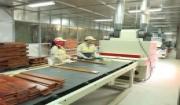 hình ảnh tại nhà máy sản xuất sàn gỗ tự nhiên