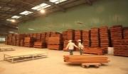 một số hình ảnh mới nhất tại nhà máy trực tiếp sản suất chế biến