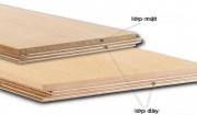 So sánh chi tiết sàn gỗ tự nhiên và sàn gỗ kỹ thuật Engineer