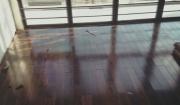 7 Mẫu sàn gỗ tự nhiên chủ nhà nên sử dụng