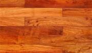 Gỗ Hương là gì? Có nên mua sàn gỗ Hương Lào cao cấp?