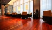 Nên lựa chọn sàn gỗ tự nhiên giáng hương hay sàn gỗ căm xe